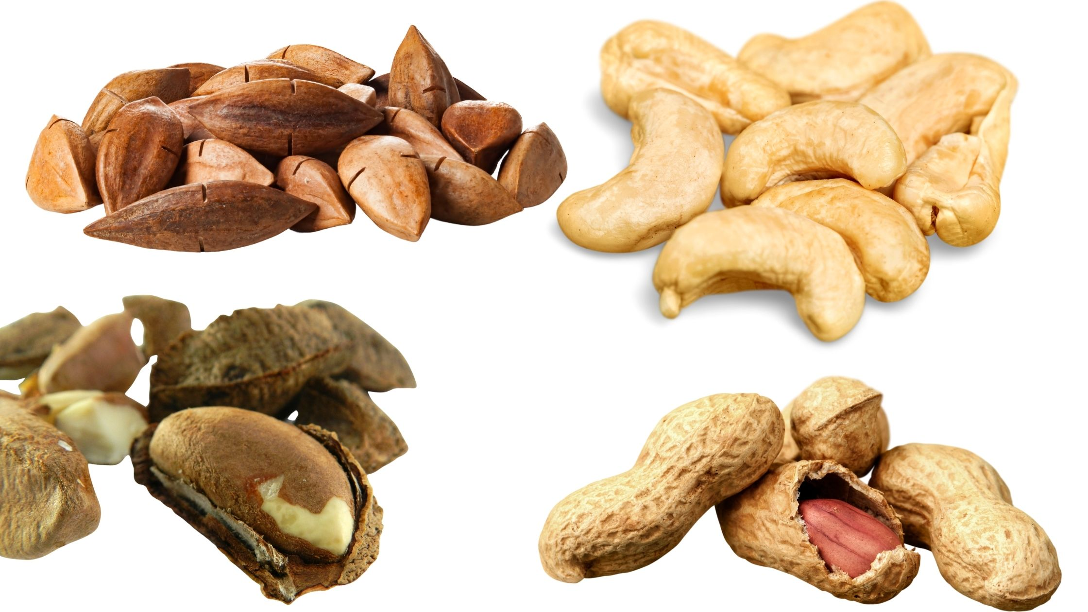 The Best and Worst Nuts to Consume on The Ketogenic Diet