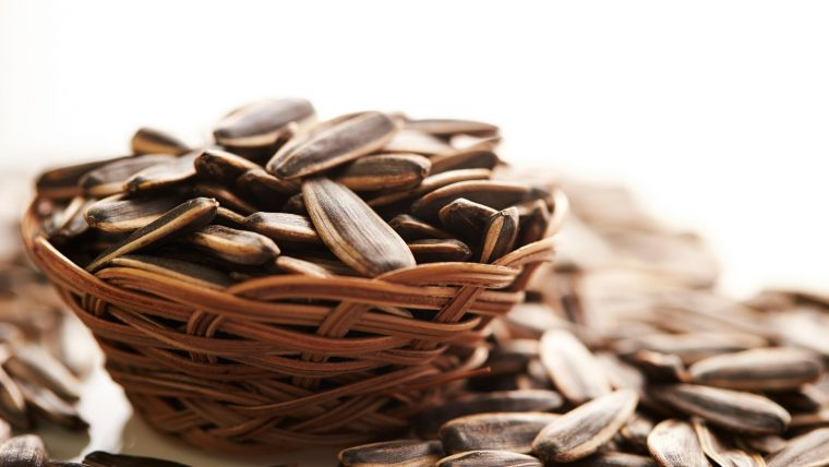Are Sunflower Seeds Keto Friendly? Must know for beginners